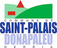 Logo Maire de Saint Palais
