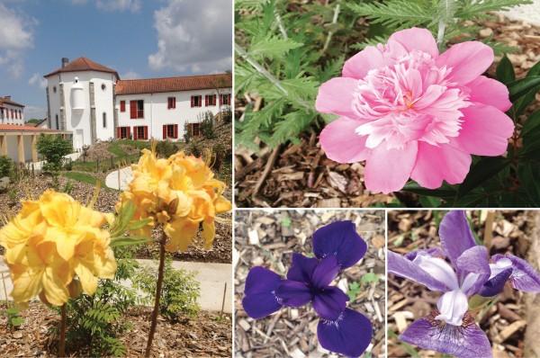 Jardin - Espace Chemins-Bideak